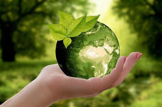 proekologiczny wizerunek przedsiębiorstwa